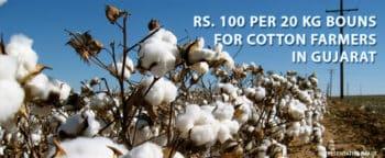 Bonus for Cotton Farmers in Gujarat