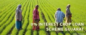 Zero Interest Loan Scheme for Farmers in Gujarat for Loans upto Rs. 3 Lakh