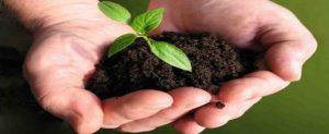 Amma Bio-Fertilizers Scheme & Uzhavan App for Farmers in Tamilnadu