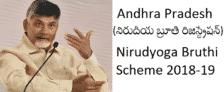 AP Nirudyoga Bruthi Scheme Registration
