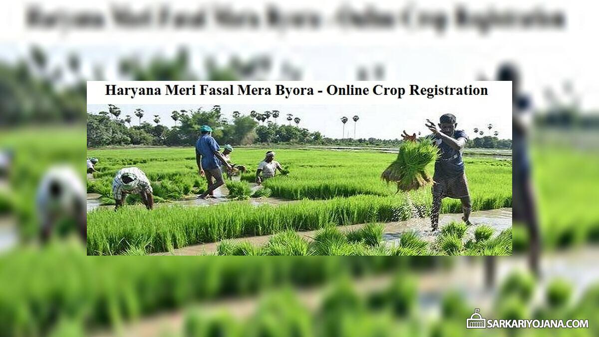 Haryana Meri Fasal Mera Byora Farmers Crop Details Registration