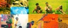 Aajeevika Grameen Express Yojana AGEY Punjab