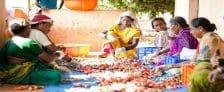 Karnataka New Loan Scheme Self Help Groups