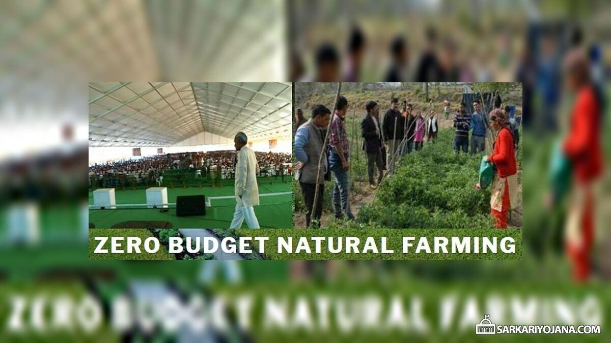 AP Zero Budget Natural Farming – Subhash Palekar Training Program for Farmers