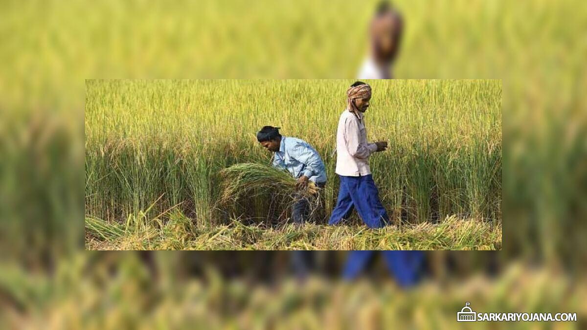 Assam Farm Loan Waiver Scheme (Debt Relief Scheme) – 25% Loan Amount Waived
