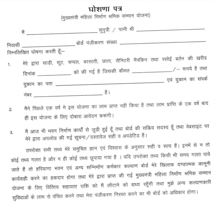 Chief Minister Mahila Shram Samman Yojana Form PDF
