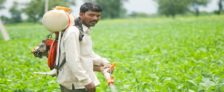 Rajasthan Disburse Paperless Farm Loan Distribution Scheme