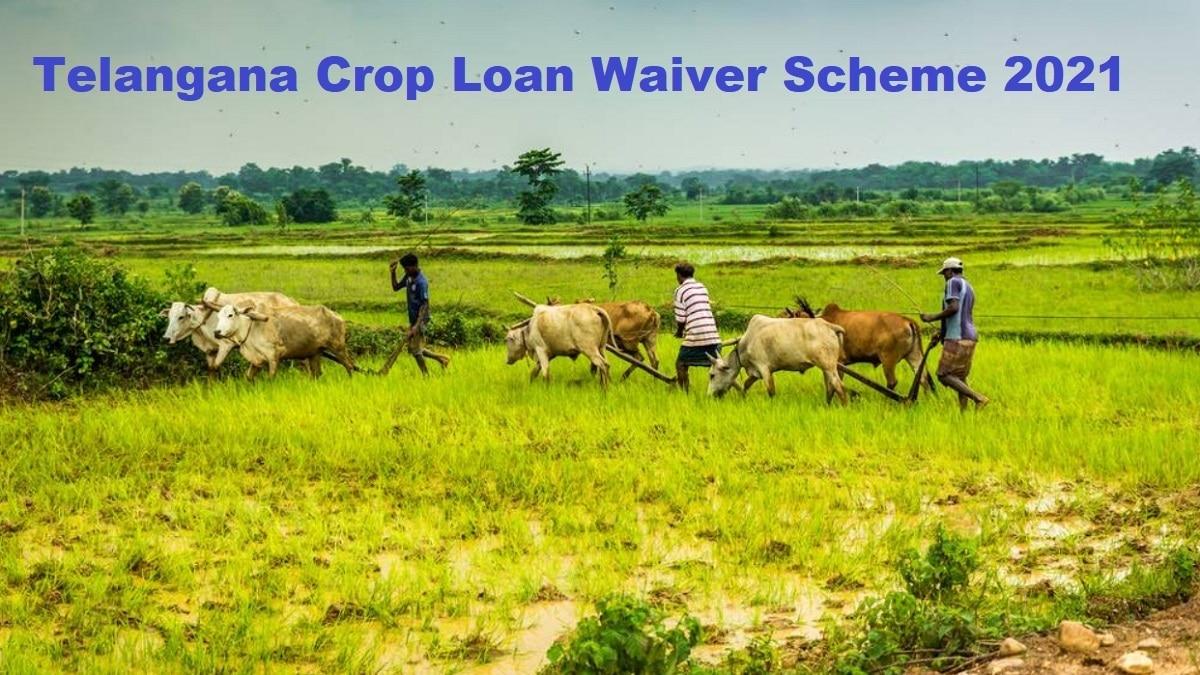 Telangana Crop Loan Waiver Scheme 2021