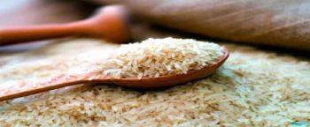 छत्तीसगढ़ सरकार नई खाद्य नीति – एपीएल/बीपीएल परिवारों को देगी सब्सिडी पर चावल