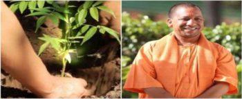 UP Vriksharopan Mahakumbh Campaign Yogi Govt Plants 22 Crore Trees