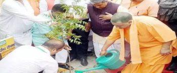 UP Vriksharopan Mahakumbh Yogi Govt Plant 22 Crore Trees