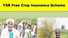 [Apply] AP YSR Free Crop Insurance Scheme 2020-2021 Registration / Application Form for Farmers