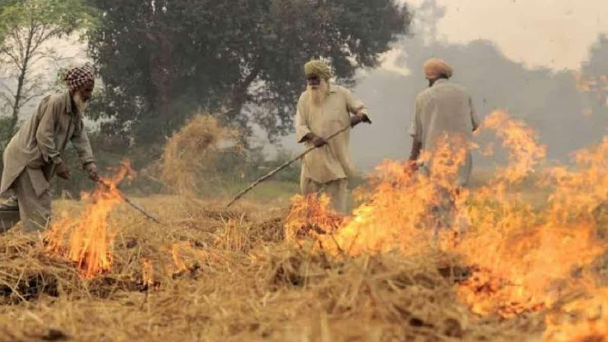 Haryana Parali Incentive Scheme Stubble Burning