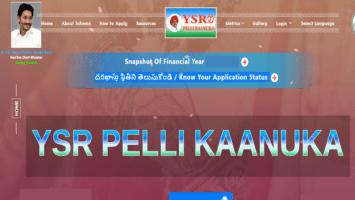 AP YSR Pelli Kanuka Application Form Status