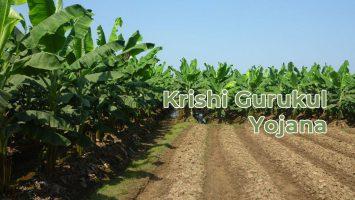 krishi gurukul yojana