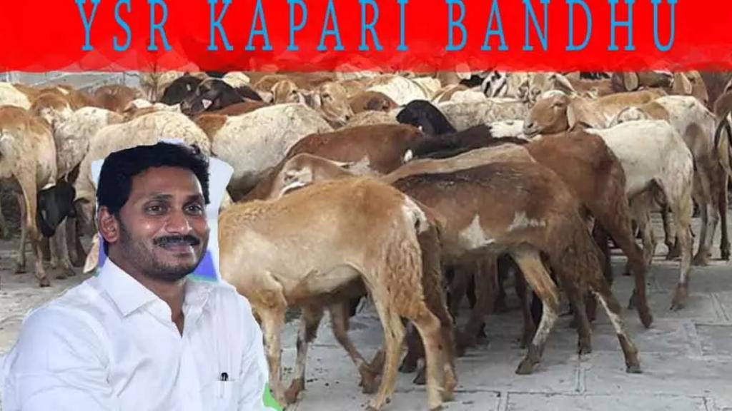 [Apply] AP YSR Kapari Bandhu Scheme 2020-21 Online Application / Registration Form