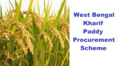 WB Kharif Paddy Procurement Scheme 2020-2021 – Free Rice through PDS to 10 Cr People