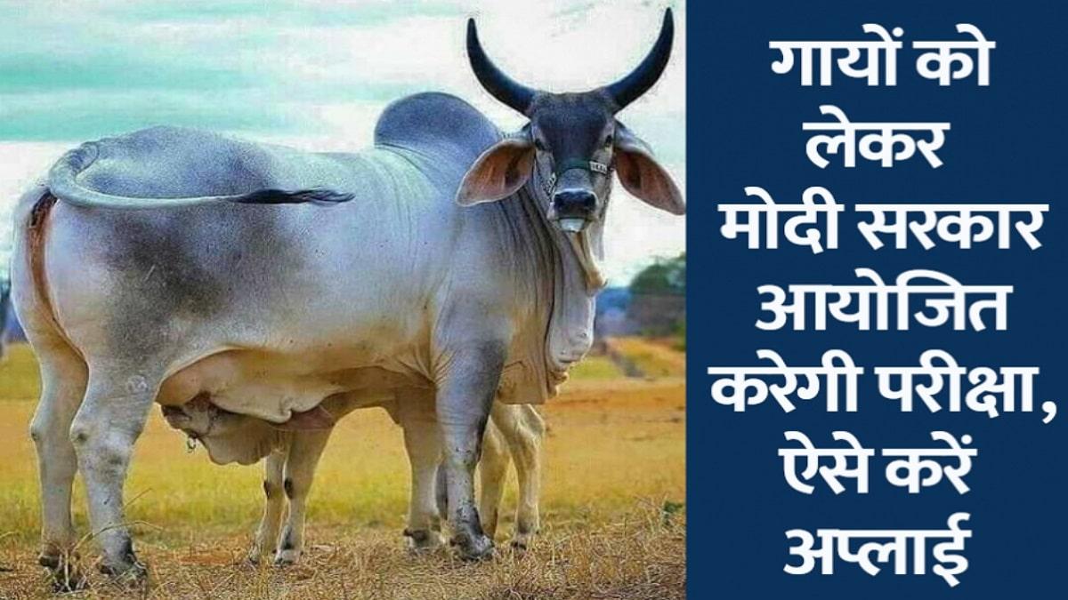 Gau Vigyan Pariksha Cow Science Exam Apply