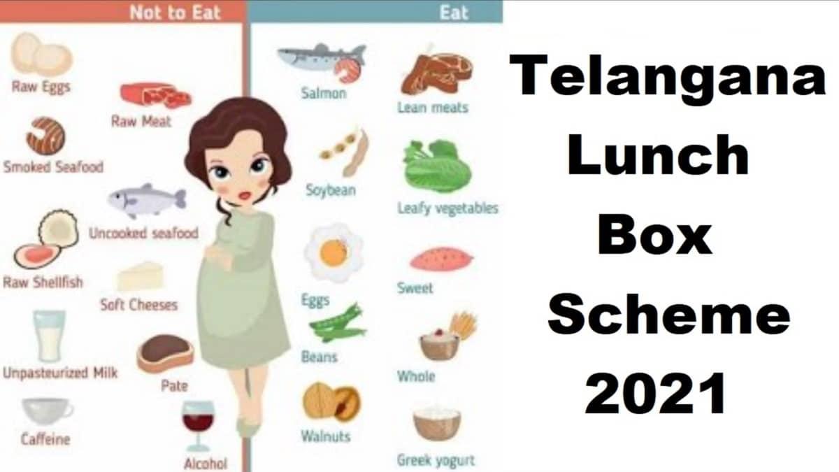 Telangana Lunch Box Scheme